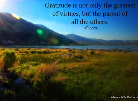 Manifesting Through Gratitude