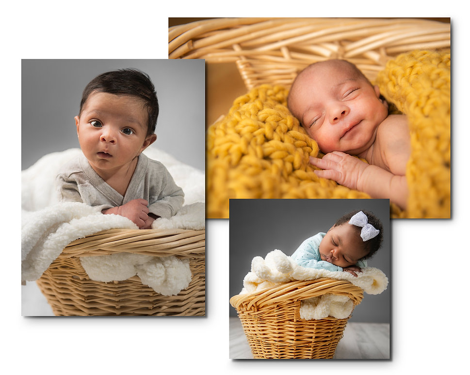Professional Studio newborn portraits