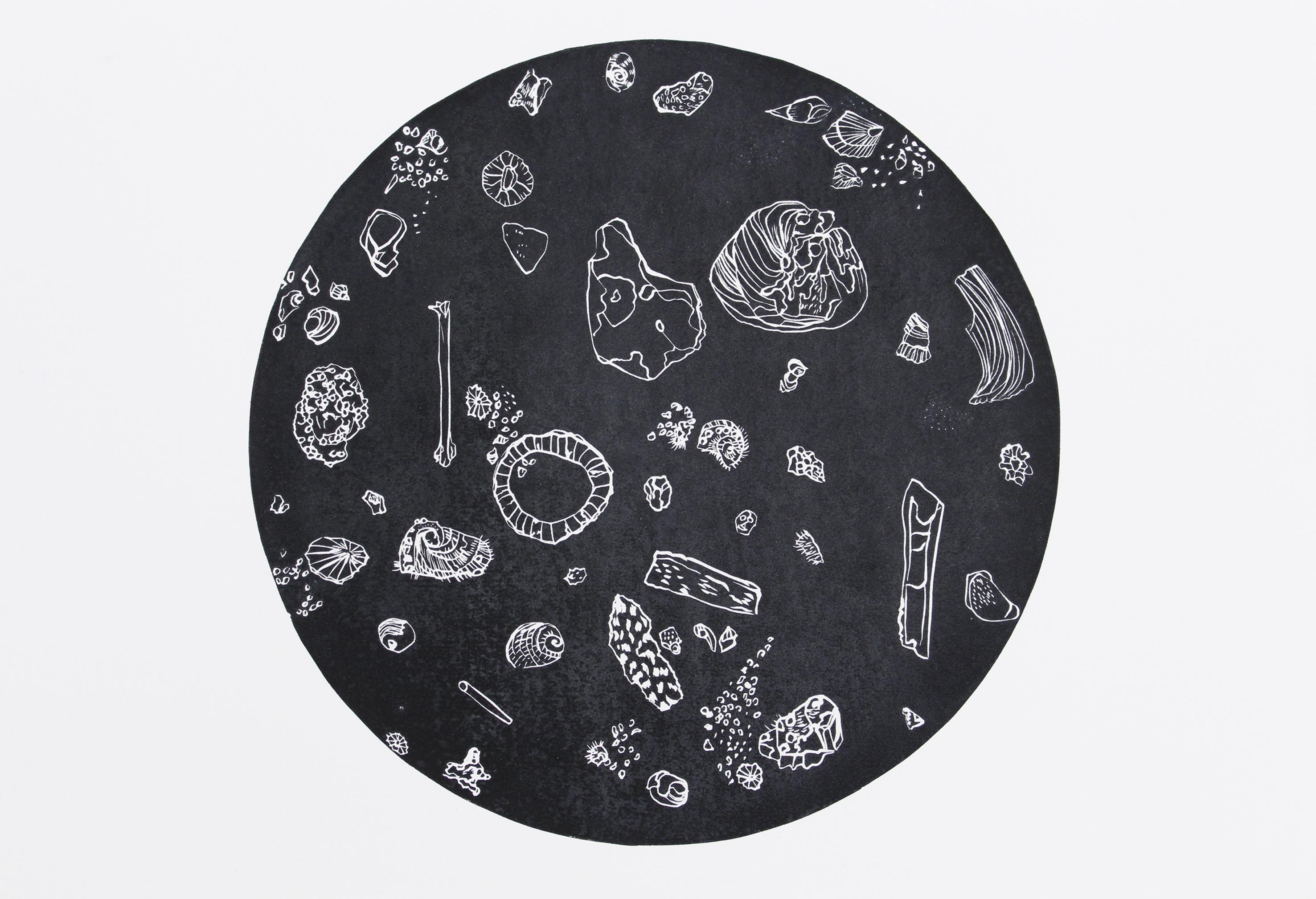 Midden Constellation