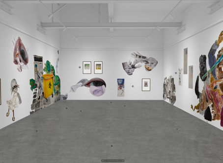 An interview on the ANCA Gallery Blog, Bodies of Matter