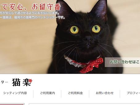 猫楽sanキャットシッター研修🐾第2弾