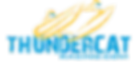 Thundercat logo PNG.png