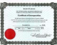 Certificate Terra Capital.jpg