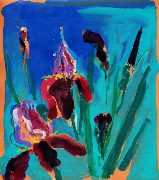 Irises, 2016