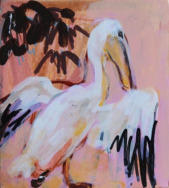 Pelican, 2018