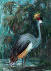 Grey crowned crane, 2018