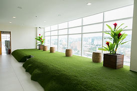 IDEA ACADEMIA_green lounge01.jpg