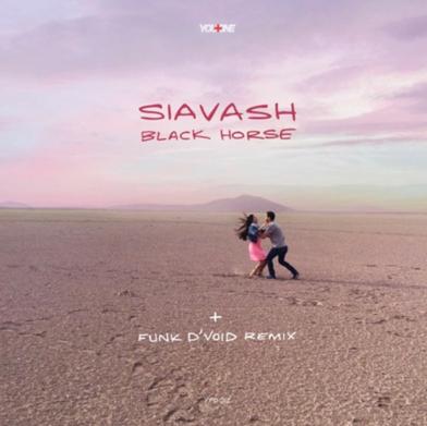 Siavash - Black Horse feat. Funk D'Void Remix