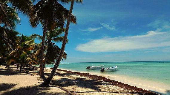 caribbean-1033906_1280.jpg