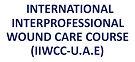 iiwcc logo.jpg