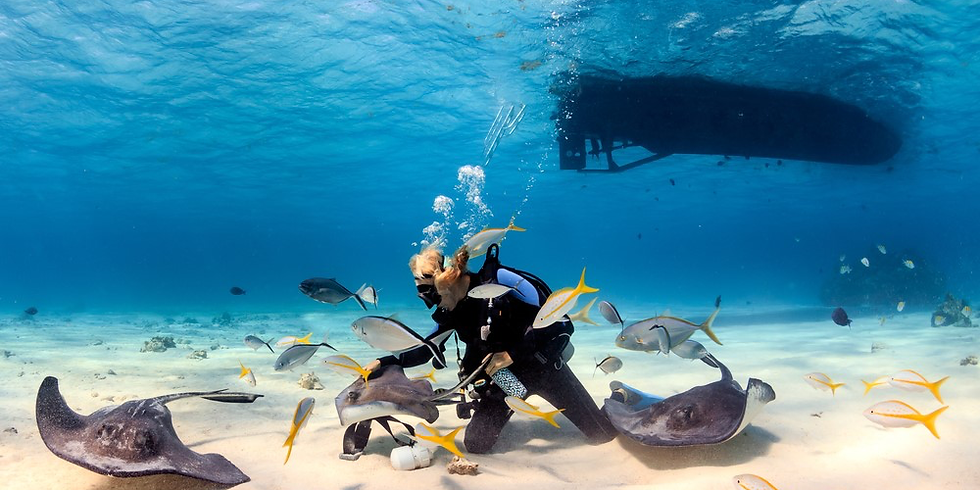 Grand Cayman Dive Trip