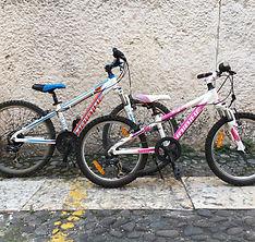 Biciclette a noleggio Verona