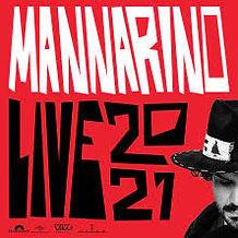 Mannarino_Live_Arena_di_Verona.jpg