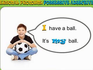 Possessive Determiners(所有限定詞)