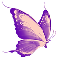 cropped-purple-butterfly-favicon_edited.