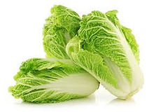 Chines Cabbage