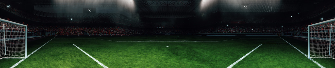 STADIUM_WIDE_05_WEB.jpg