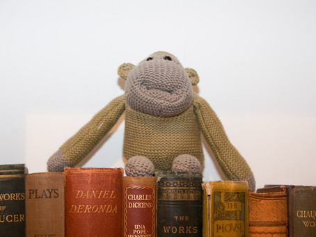 Monkey See Monkey Read