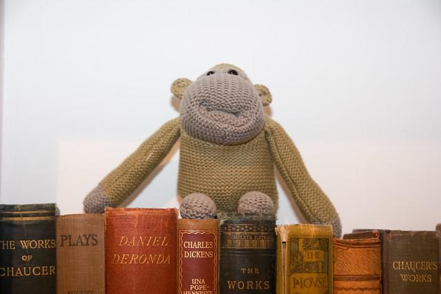 Monkey sitting on books
