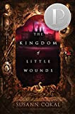 YA Book Review: The Kingdom of Little Wounds by Susann Cokal