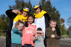 Penguins on the Southern