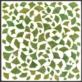 Ginkgo Tessellation IX