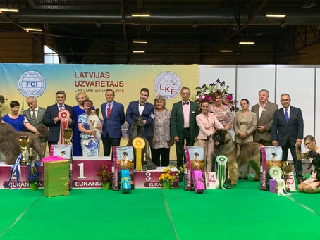 "Riga! INTERNATIONAL DOG SHOW ""LATVIAN WINNER`2019"" Cruft's qualification show - 08.06.2019"