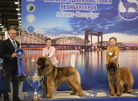 05/05/2019  LEONBERGER SPECIALITY SHOW