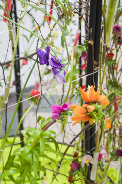Florist_Geschäft_des_Jahres16-25
