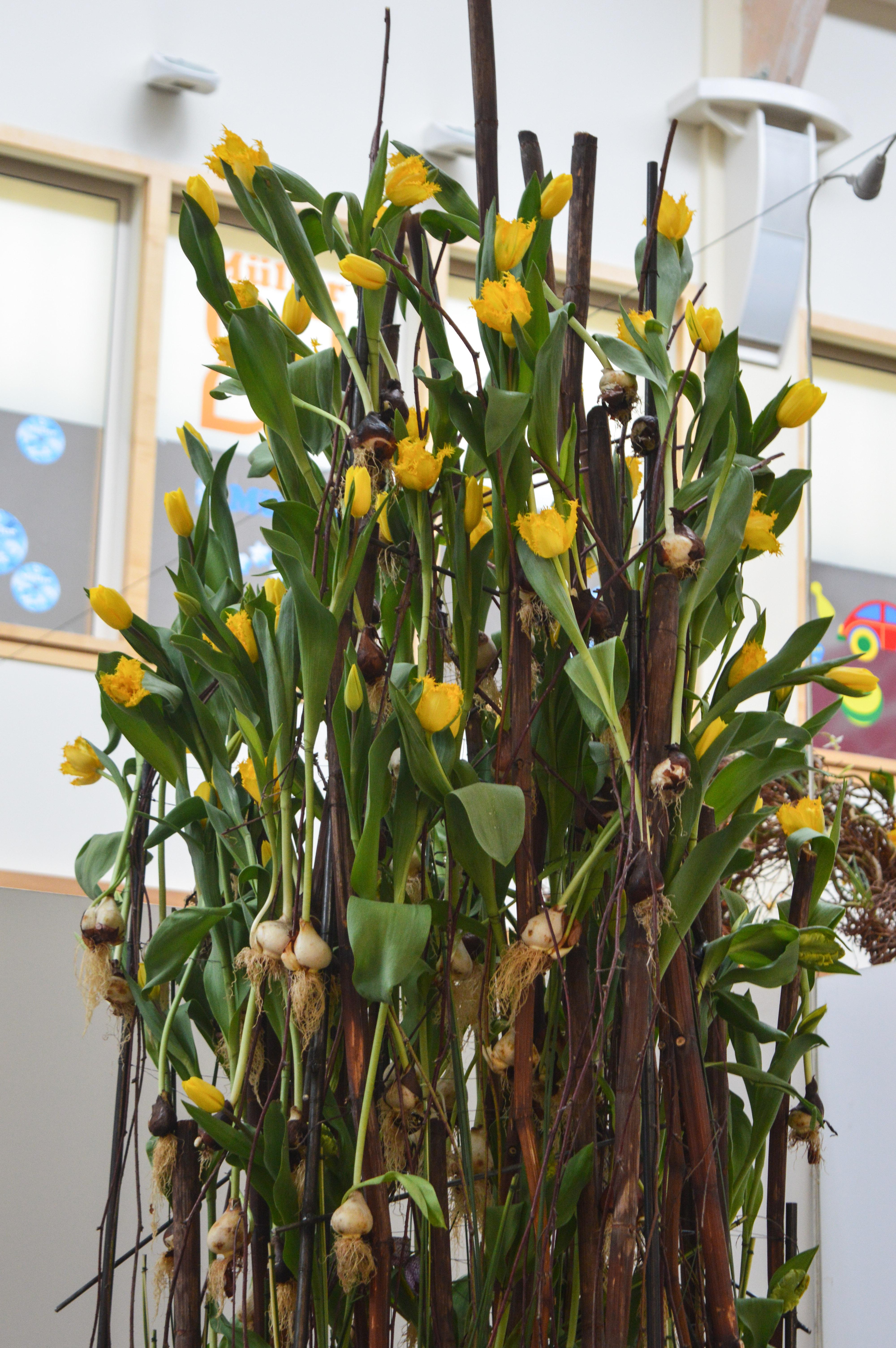 Florist_Geschäft_des_Jahres16-29