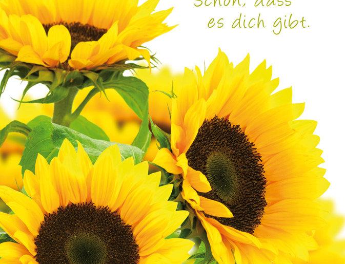 Geburtstag - Sonnenblume