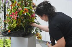 Florist_Geschäft_des_Jahres16-33