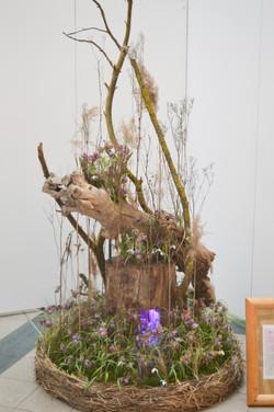 Florist_Geschäft_des_Jahres16-31