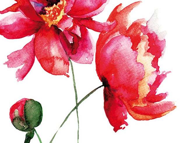 Ohne Worte - Mohnblumenmalerei