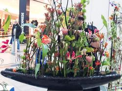 Florist_Geschäft_des_Jahres16-28-2