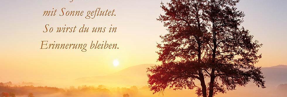 Trauer - Du hast jeden Raum mit Sonne geflutet....