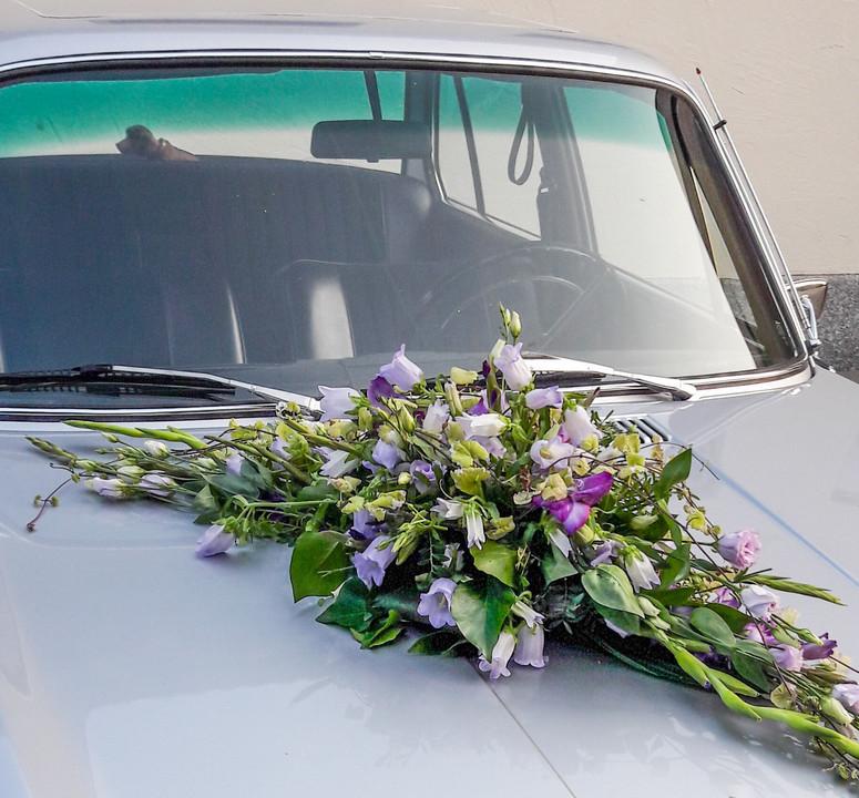 Autogesteck in lila