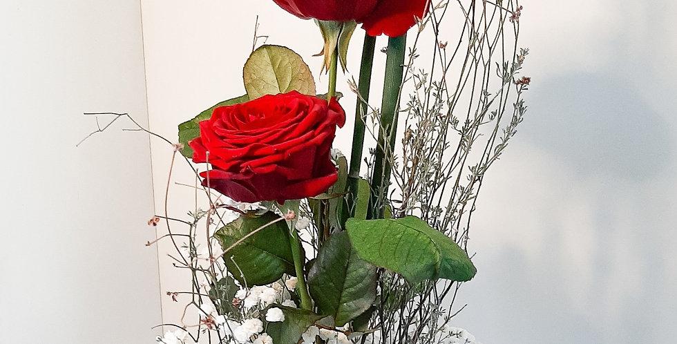 2 Rote Rosen mit Grün & Schleierkraut