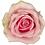 Thumbnail: Rosen Avalanche  PINK
