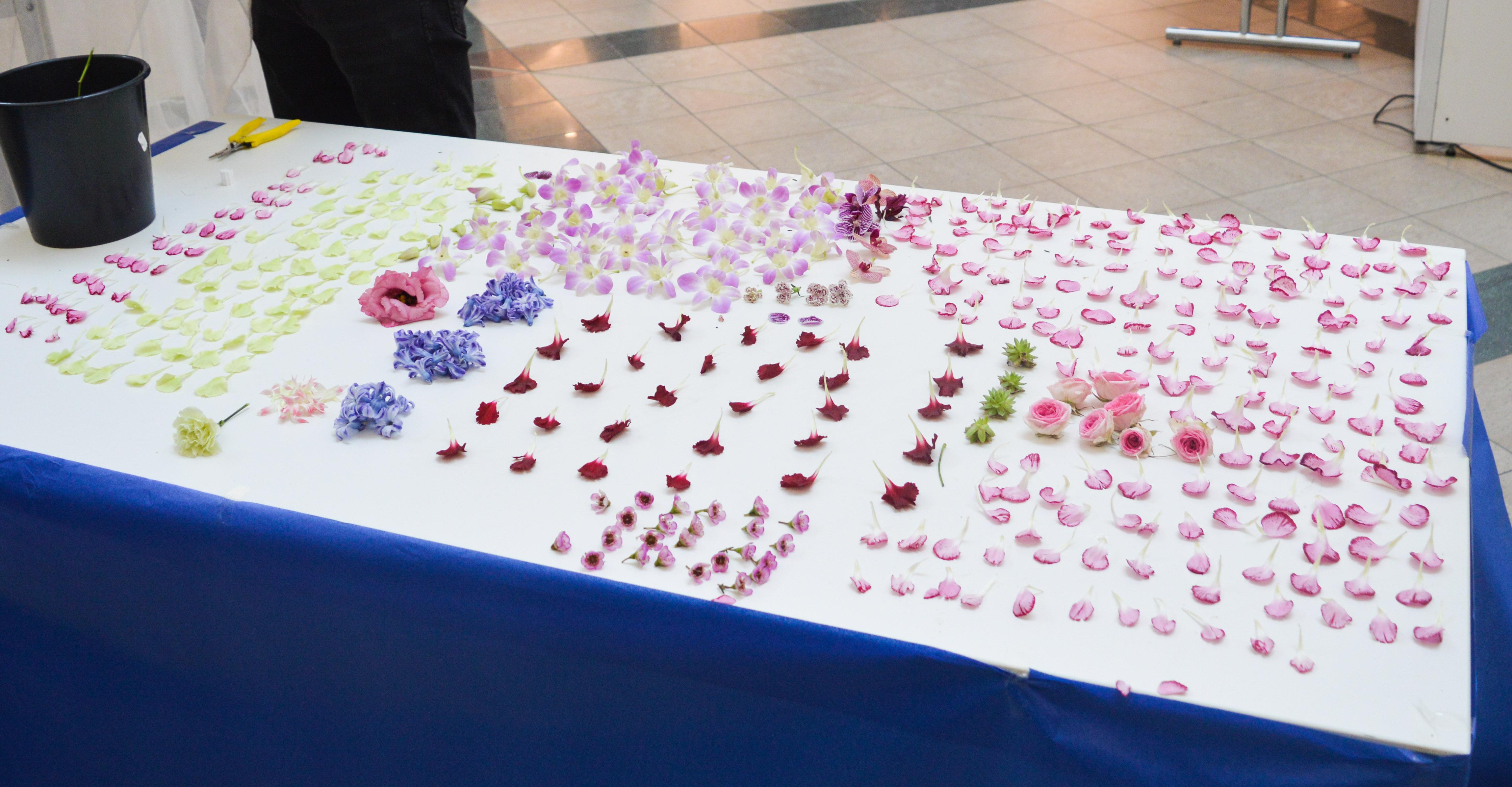 Florist_Geschäft_des_Jahres16-35