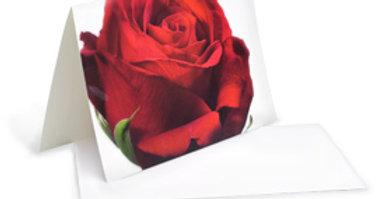 Motivkarte - Rote Rose