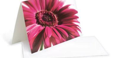 Motivkarte -Pinke Gerbera