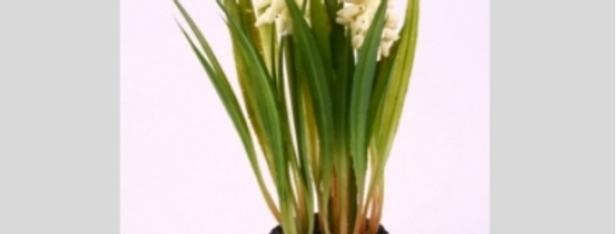 Muscari Pflanze, Künstlich ,weiss