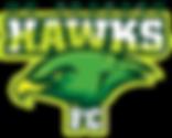 Hawks Light back.png