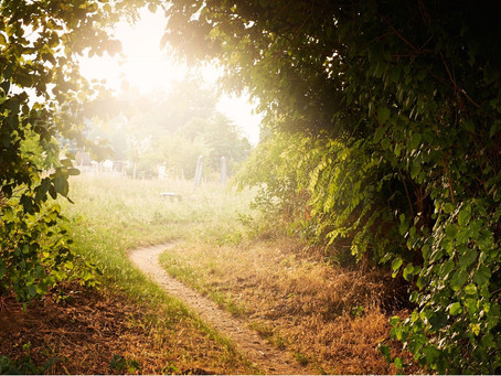 What path are you leaving behind?