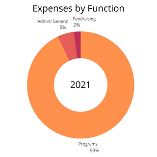 Expenses by Function.png