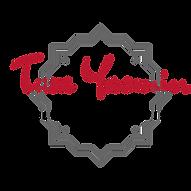 Belly dancer Wollongong Tara Yasmin logo