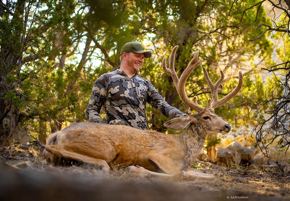 Utah Archery Mule Deer