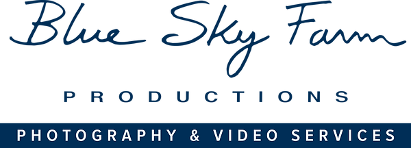 BSFP_logo_photovideo.png
