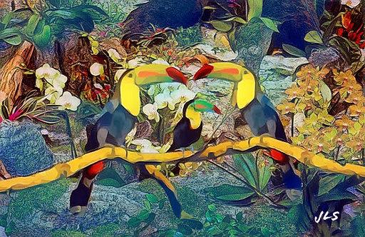 coussin toucan